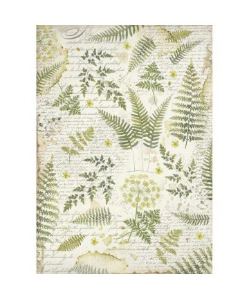 Pirinčani papir-DFSA3047...