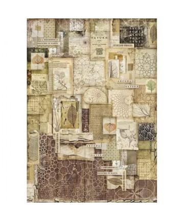 Pirinčani papir-DFSA3051...
