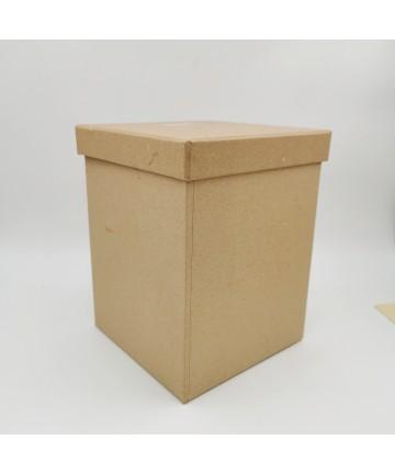 Kartonska kutija-...