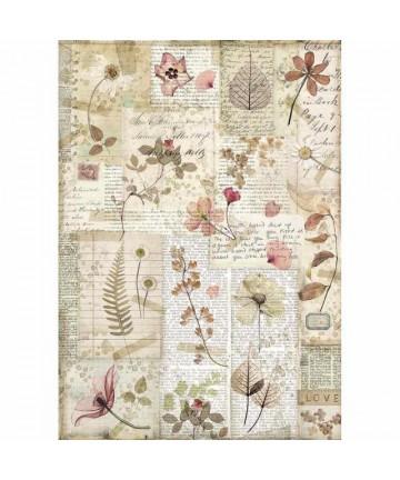 Pirinčani papir-DFSA4440